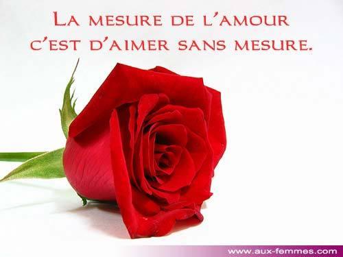 1df2165a84e Fleur pour amour - Photos de Magnolisafleur